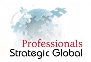 professional-300x205